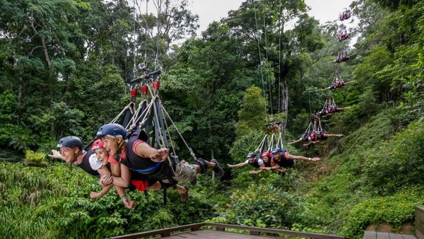 Minjin-Jungle-Swing-Australia
